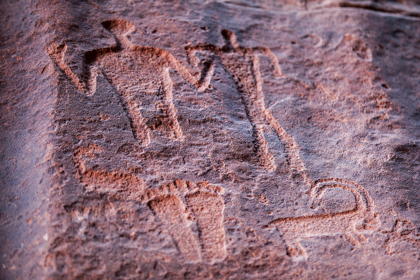 Anfishyyeh Inscriptions